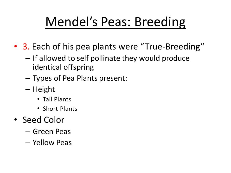 Mendel's Peas: The Cross Pollination Wanted to produce seeds by joining male and female cells from two different plants 4.