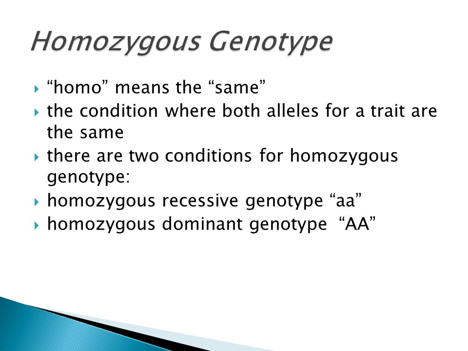 " ""homo"" means the ""same""  the condition where both alleles for a trait are the same  there are two conditions for homozygous genotype:  homozygous"