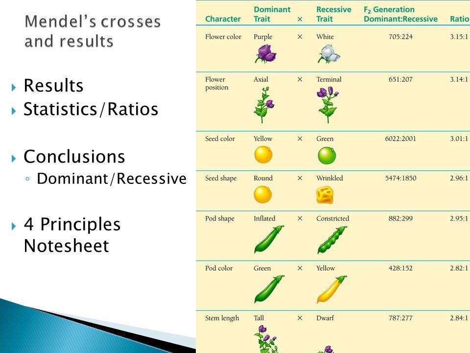  Results  Statistics/Ratios  Conclusions ◦ Dominant/Recessive  4 Principles Notesheet