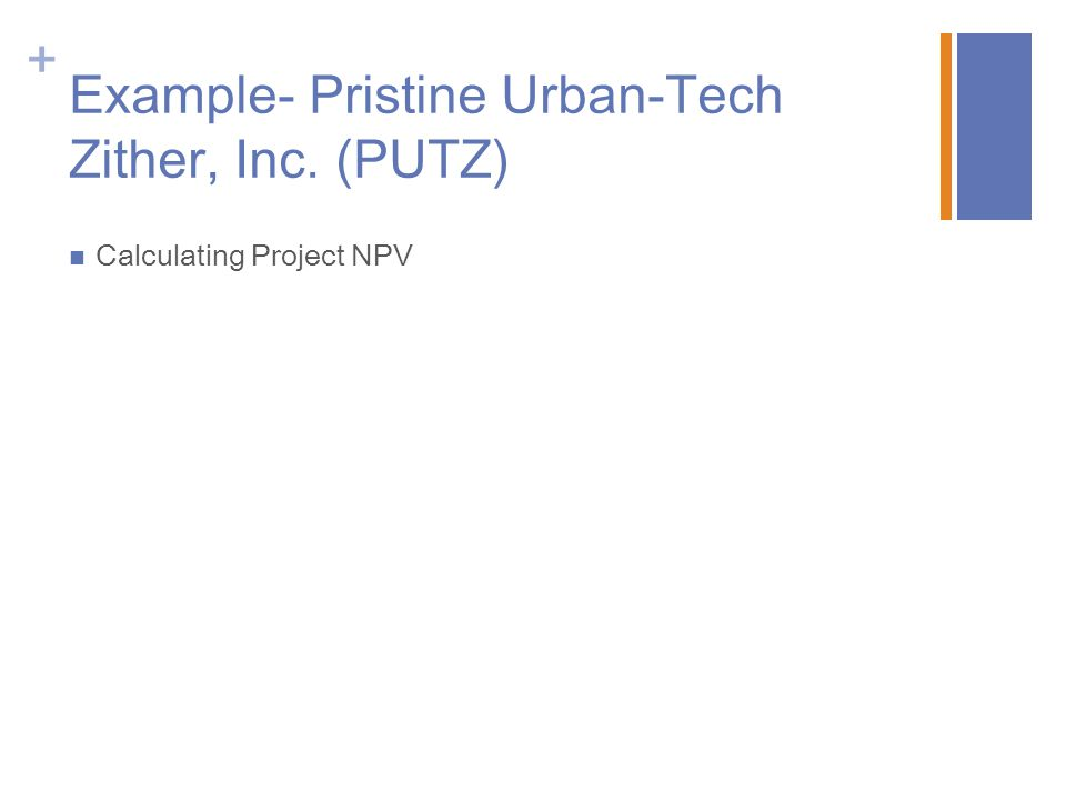 + Example- Pristine Urban-Tech Zither, Inc. (PUTZ) Calculating Project NPV