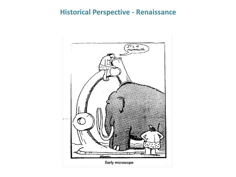 Historical Perspective - Renaissance