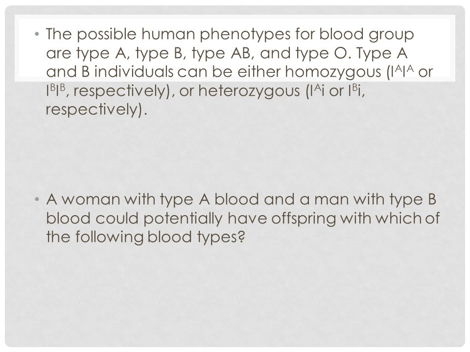 The possible human phenotypes for blood group are type A, type B, type AB, and type O. Type A and B individuals can be either homozygous (I A I A or I
