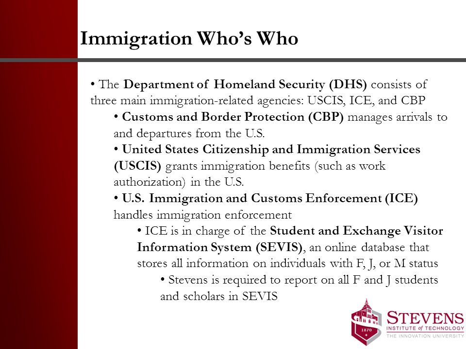 Immigration Who's Who The Department of Homeland Security (DHS) consists of three main immigration-related agencies: USCIS, ICE, and CBP Customs and Border Protection (CBP) manages arrivals to and departures from the U.S.