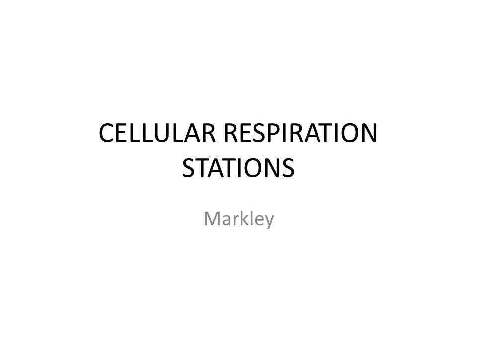 CELLULAR RESPIRATION STATIONS Markley