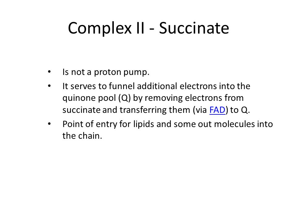 Complex II - Succinate Is not a proton pump.