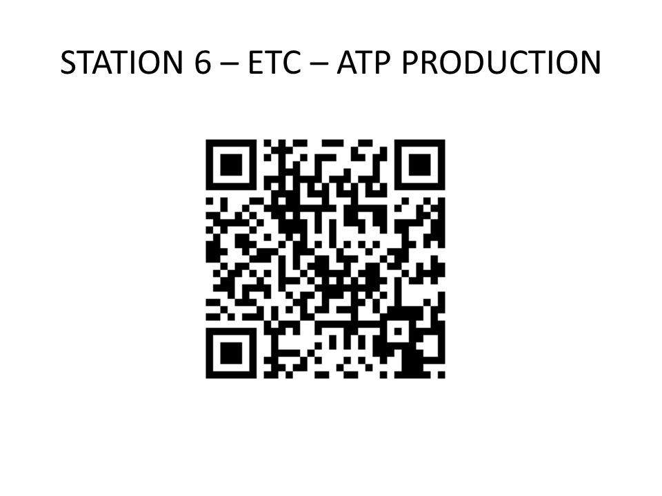 STATION 6 – ETC – ATP PRODUCTION