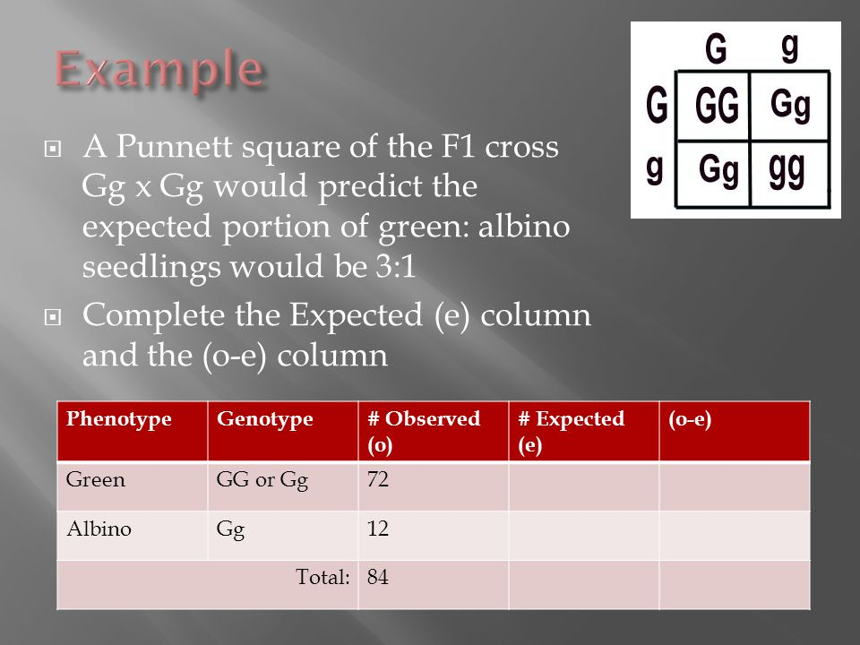  A Punnett square of the F1 cross Gg x Gg would predict the expected portion of green: albino seedlings would be 3:1  Complete the Expected (e) column and the (o-e) column PhenotypeGenotype# Observed (o) # Expected (e) (o-e) GreenGG or Gg72 AlbinoGg12 Total:84