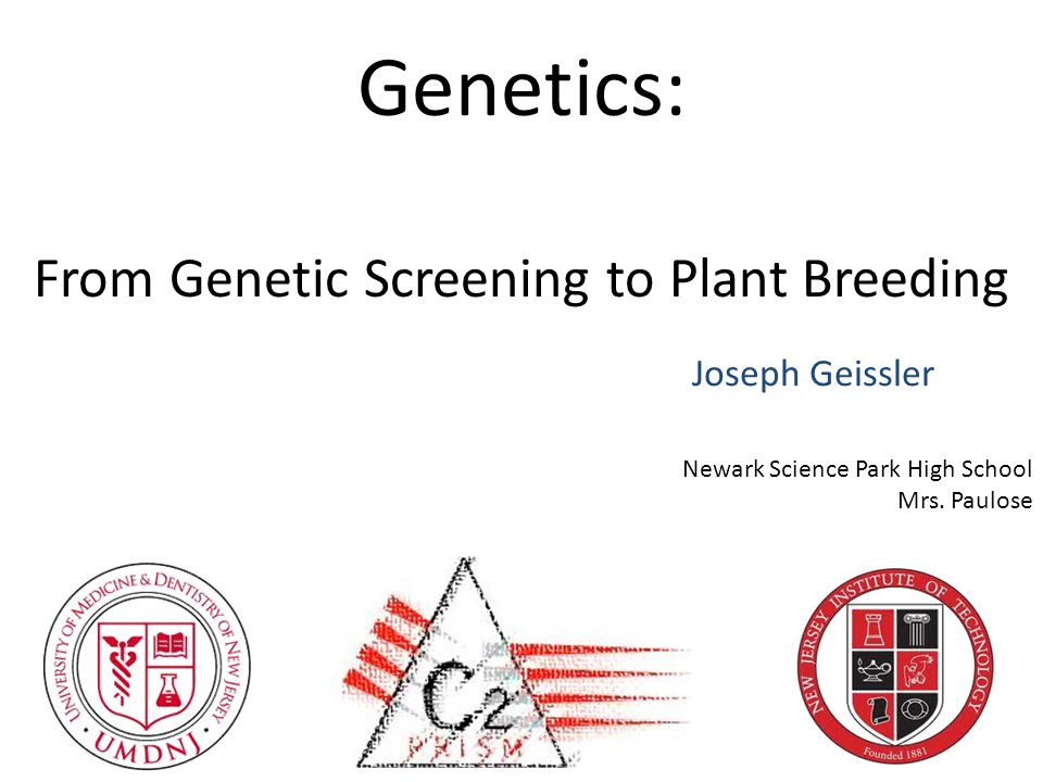 Genetics: From Genetic Screening to Plant Breeding Joseph Geissler Newark Science Park High School Mrs.