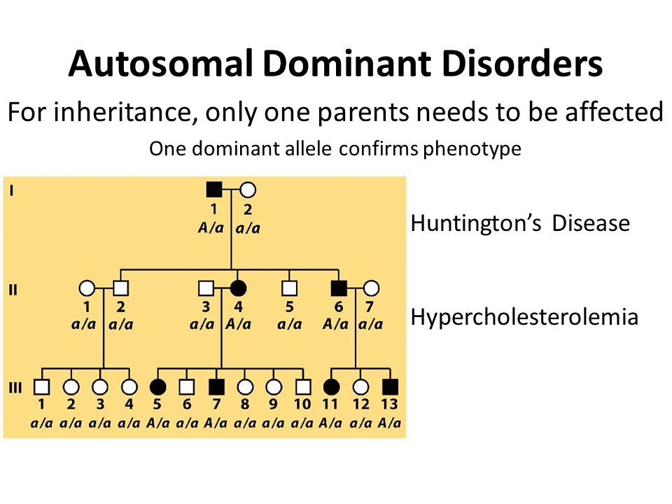 Autosomal Dominant Disorders For inheritance, only one parents needs to be affected One dominant allele confirms phenotype Huntington's Disease Hypercholesterolemia