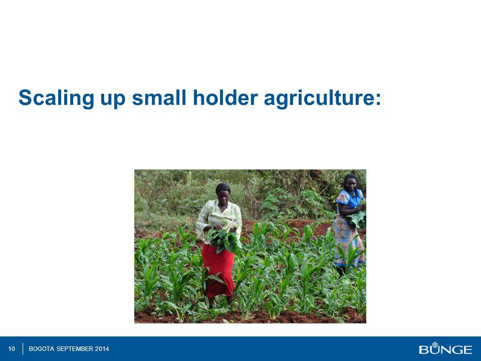 10 BOGOTA SEPTEMBER 2014 Scaling up small holder agriculture: