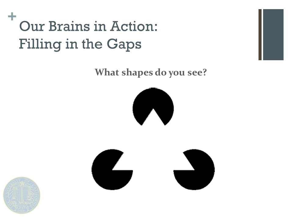 + Our subconscious fills in the lines for us, to form a shape we are familiar with Our Brains in Action: Filling in the Gaps