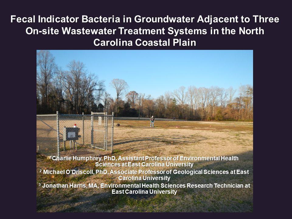Groundwater FIB Spatial Distribution Geometric Mean Total Coliform F1 = 2007 MPN/100 mL F2 = 1178 MPN/100 mL p < 0.10 *More even distribution of total coliform in GW at WCH in GW at WCH