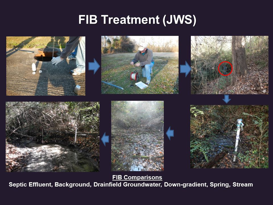 FIB Treatment (JWS) FIB Comparisons Septic Effluent, Background, Drainfield Groundwater, Down-gradient, Spring, Stream