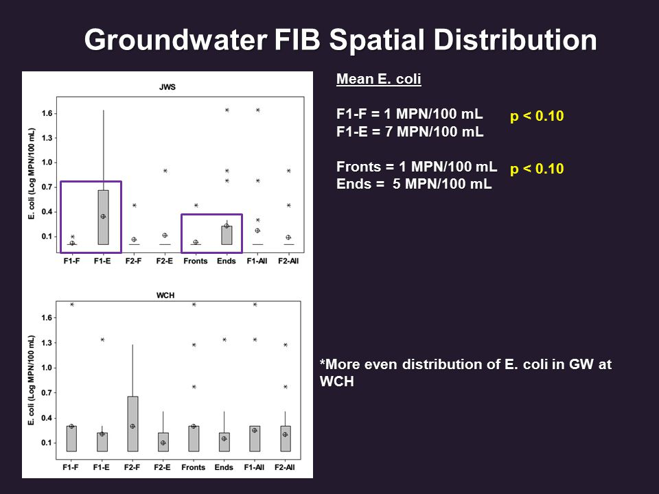 Groundwater FIB Spatial Distribution Mean E. coli F1-F = 1 MPN/100 mL F1-E = 7 MPN/100 mL Fronts = 1 MPN/100 mL Ends = 5 MPN/100 mL p < 0.10 *More eve