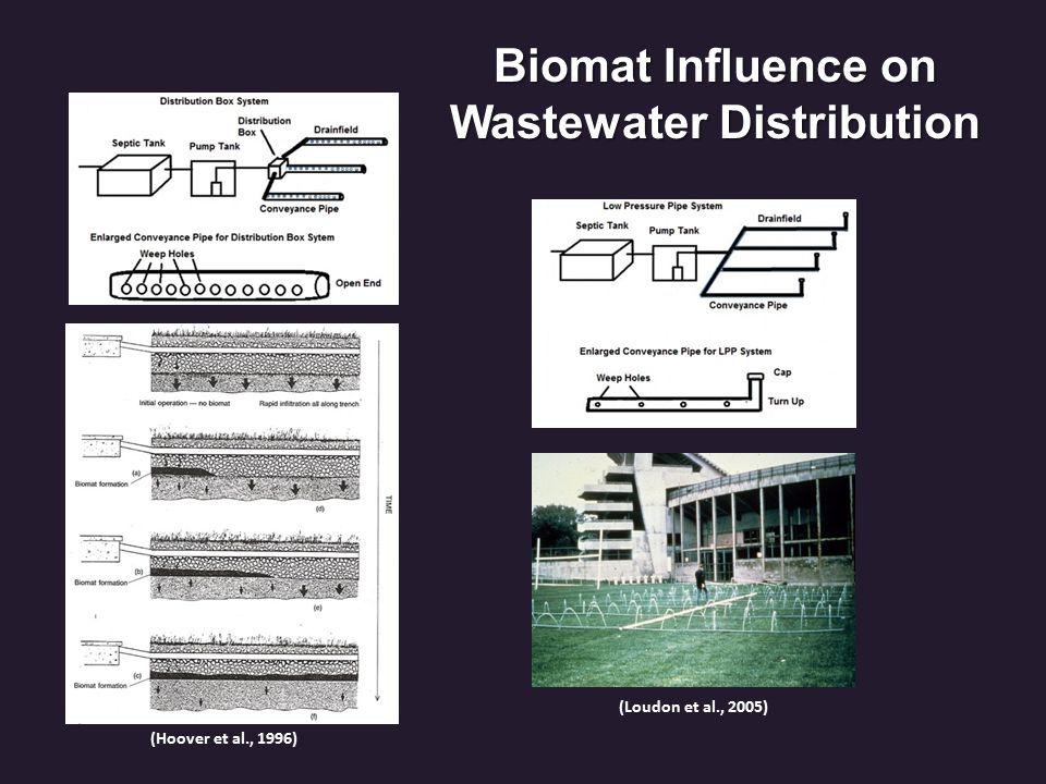 FIB Treatment (JWS) FIB Comparisons Septic Effluent, Background, Drainfield Groundwater, Down-gradient, Spring, Stream