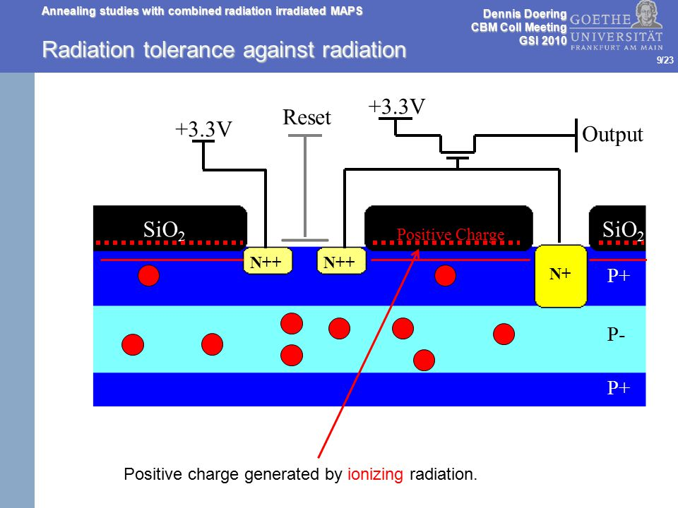 /23 Annealing studies with combined radiation irradiated MAPS 9 Radiation tolerance against radiation Reset +3.3V Output SiO 2 N++ N+ P+ P- P+ SiO 2 Positive Charge Positive charge generated by ionizing radiation.