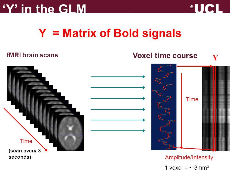 X = Design Matrix Time (n) Regressors (m) 'X' in the GLM