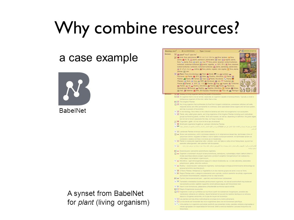 Why combine resources A synset from BabelNet for plant (living organism) a case example BabelNet