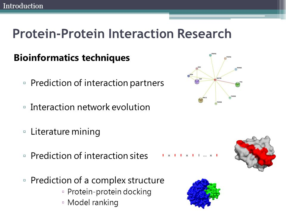 Bioinformatics techniques ▫ Prediction of interaction partners ▫ Interaction network evolution ▫ Literature mining ▫ Prediction of interaction sites ▫ Prediction of a complex structure ▫ Protein-protein docking ▫ Model ranking Protein-Protein Interaction Research Introduction