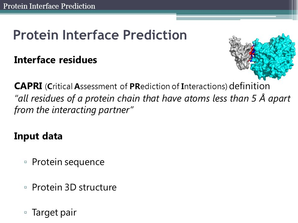 Interface residues CAPRI (Critical Assessment of PRediction of Interactions) definition all residues of a protein chain that have atoms less than 5 Å apart from the interacting partner Input data ▫ Protein sequence ▫ Protein 3D structure ▫ Target pair Protein Interface Prediction