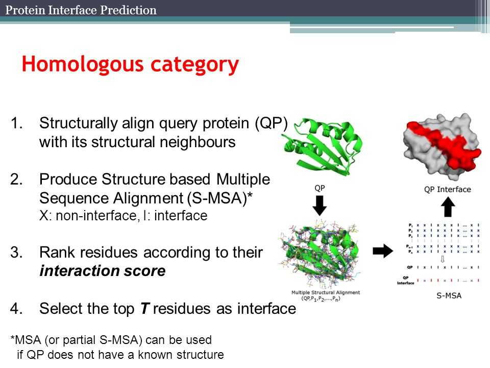 Homologous category 1.Structurally align query protein (QP) with its structural neighbours 2.Produce Structure based Multiple Sequence Alignment (S-MSA)* X: non-interface, I: interface 3.Rank residues according to their interaction score 4.Select the top T residues as interface *MSA (or partial S-MSA) can be used if QP does not have a known structure Protein Interface Prediction