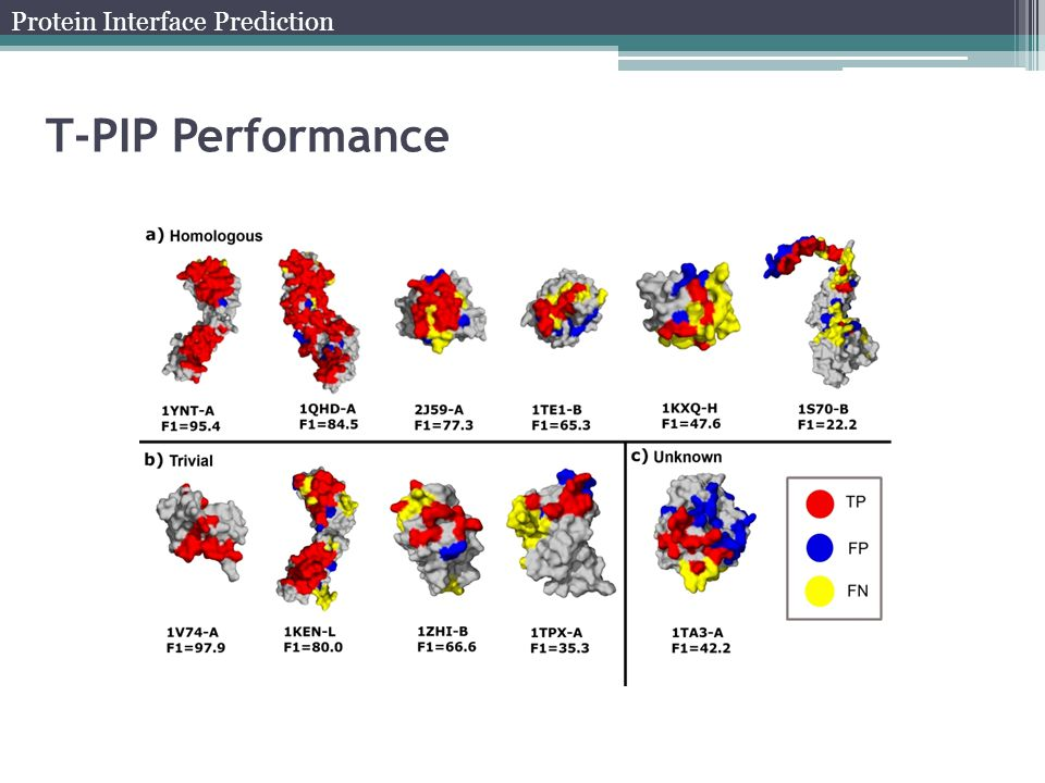 T-PIP Performance Protein Interface Prediction