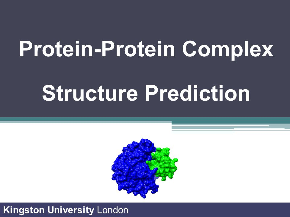 Protein-Protein Complex Structure Prediction Kingston University London