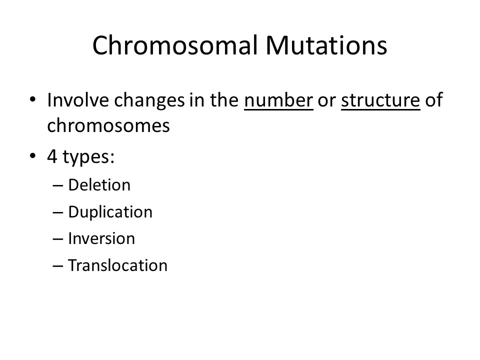 Chromosomal Mutations Involve changes in the number or structure of chromosomes 4 types: – Deletion – Duplication – Inversion – Translocation