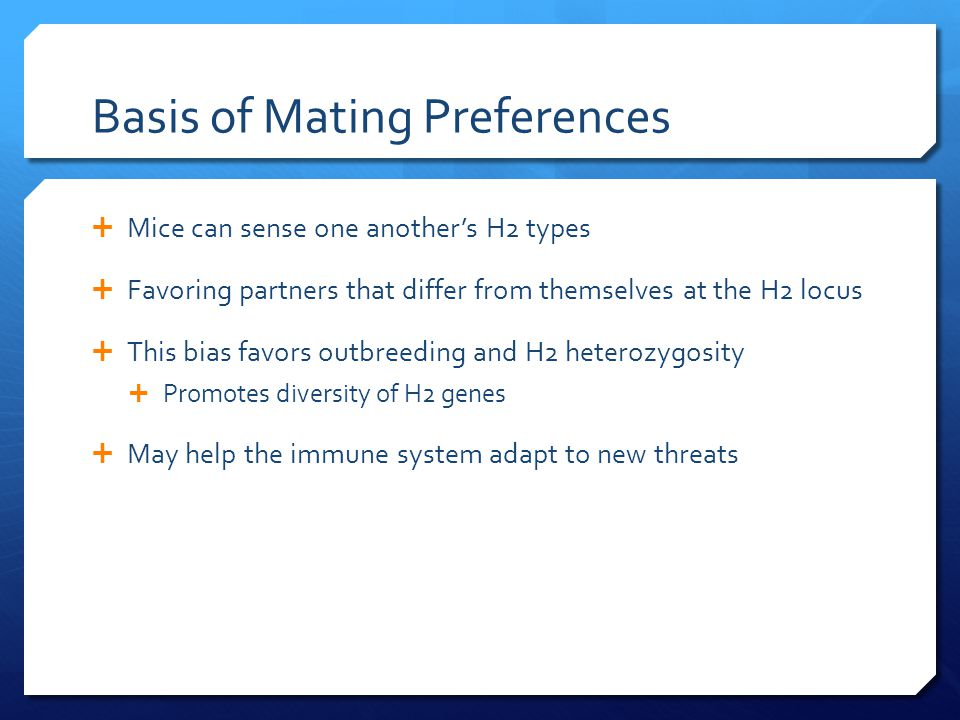 Basis of Mating Preferences  Mice can sense one another's H2 types  Favoring partners that differ from themselves at the H2 locus  This bias favors outbreeding and H2 heterozygosity  Promotes diversity of H2 genes  May help the immune system adapt to new threats