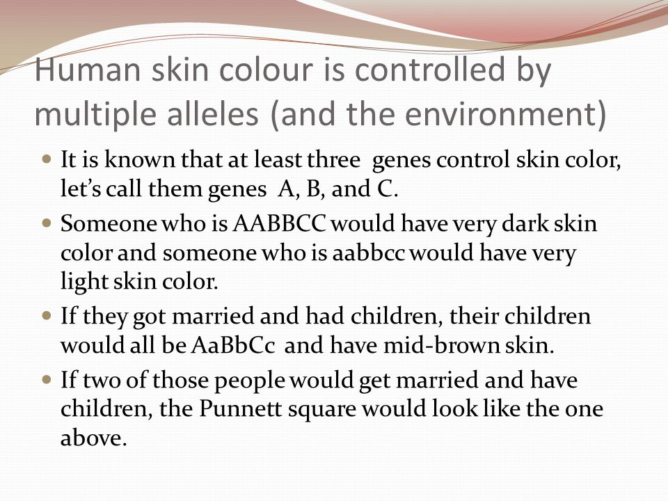 Human skin colour is controlled by multiple alleles (and the environment) It is known that at least three genes control skin color, let's call them ge