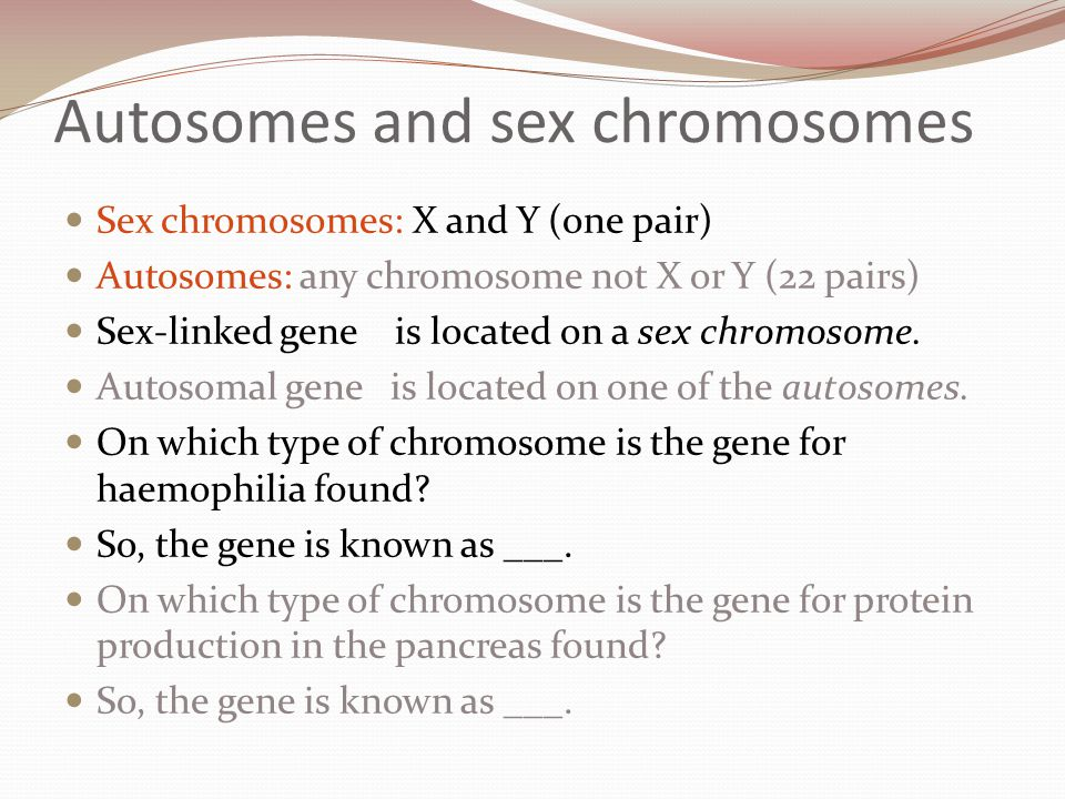 Exchange of alleles by crossing over Two non-sister chromatids can swap segments of their DNA during prophase I of meiosis.