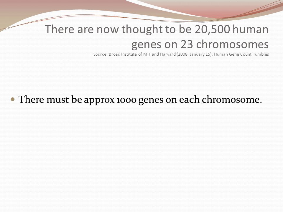 There are now thought to be 20,500 human genes on 23 chromosomes Source: Broad Institute of MIT and Harvard (2008, January 15). Human Gene Count Tumbl