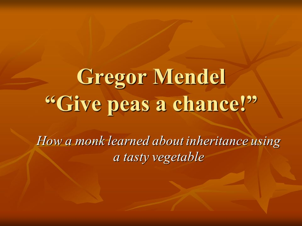 """Gregor Mendel """"Give peas a chance!"""" How a monk learned about inheritance using a tasty vegetable"""