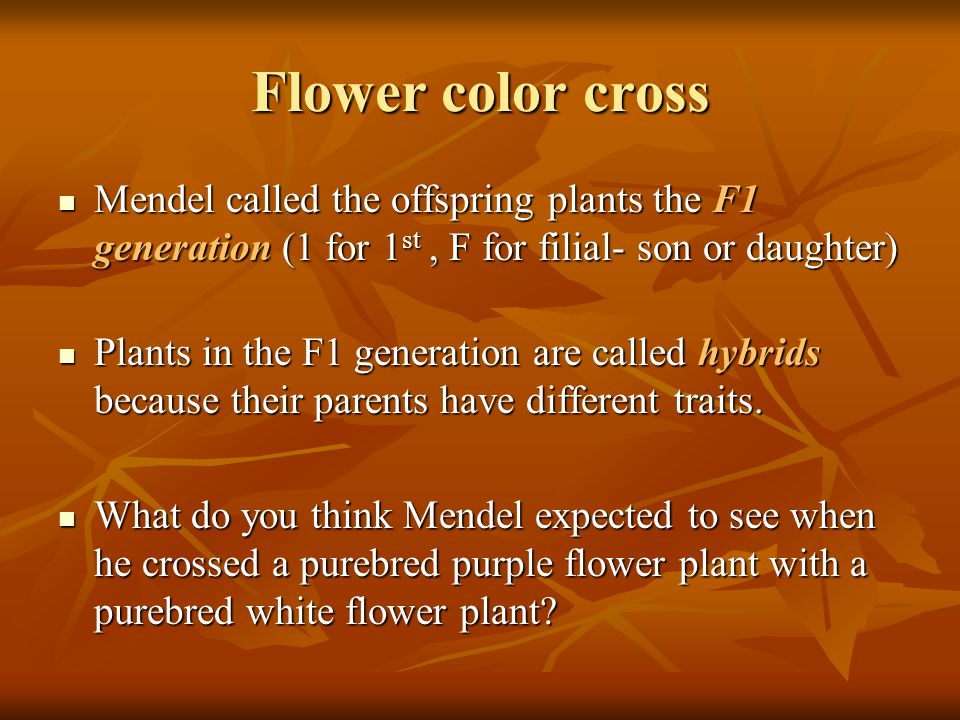 Flower color cross Mendel called the offspring plants the F1 generation (1 for 1 st, F for filial- son or daughter) Mendel called the offspring plants