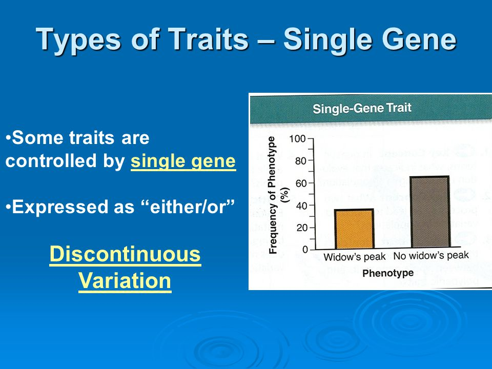 """Types of Traits – Single Gene Some traits are controlled by single gene Expressed as """"either/or"""" Discontinuous Variation"""