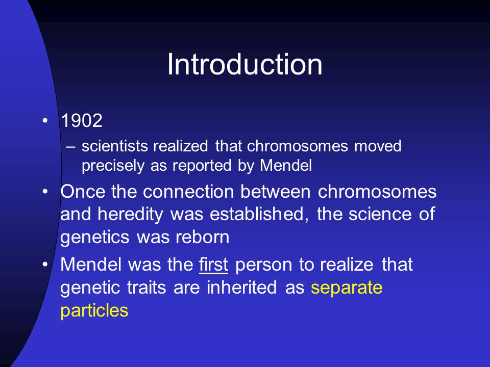 Introduction 1902 –scientists realized that chromosomes moved precisely as reported by Mendel Once the connection between chromosomes and heredity was established, the science of genetics was reborn Mendel was the first person to realize that genetic traits are inherited as separate particles