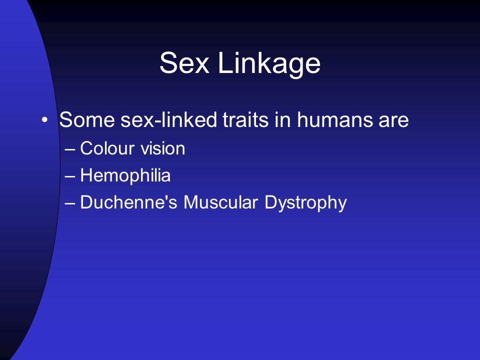 Example of hemophilia trait – (h) recessive disease