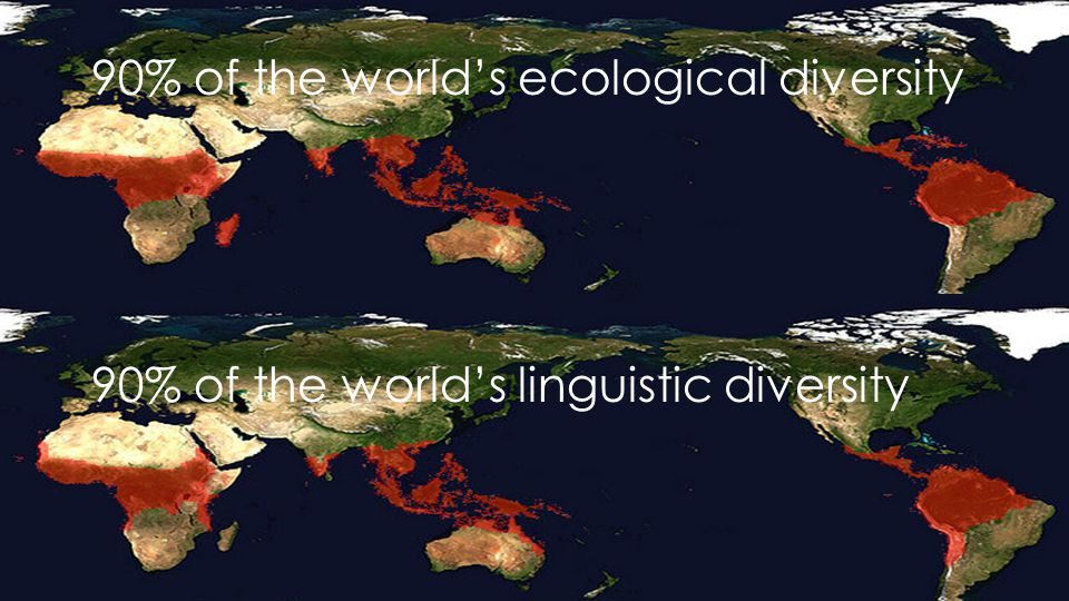 The communication age 90% of the world's ecological diversity 90% of the world's linguistic diversity