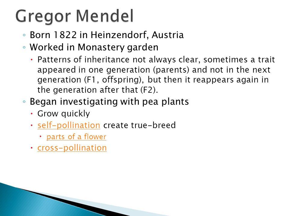 ◦ Born 1822 in Heinzendorf, Austria ◦ Worked in Monastery garden  Patterns of inheritance not always clear, sometimes a trait appeared in one generat