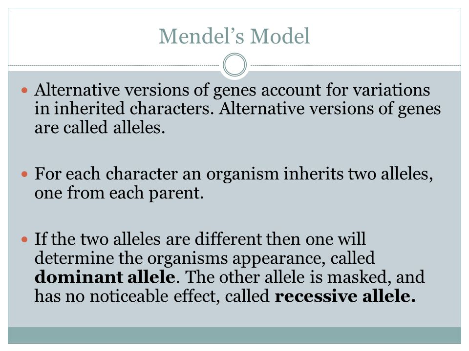 Mendel's Model Alternative versions of genes account for variations in inherited characters.