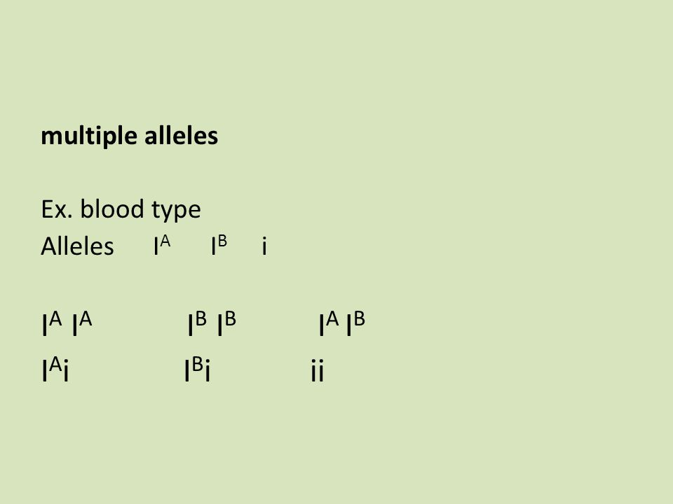 multiple alleles Ex. blood type Alleles I A I B i I A I A I B I B I A I B I A i I B iii