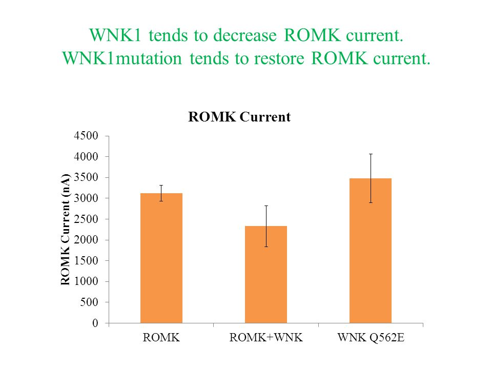 WNK1 tends to decrease ROMK current. WNK1mutation tends to restore ROMK current.