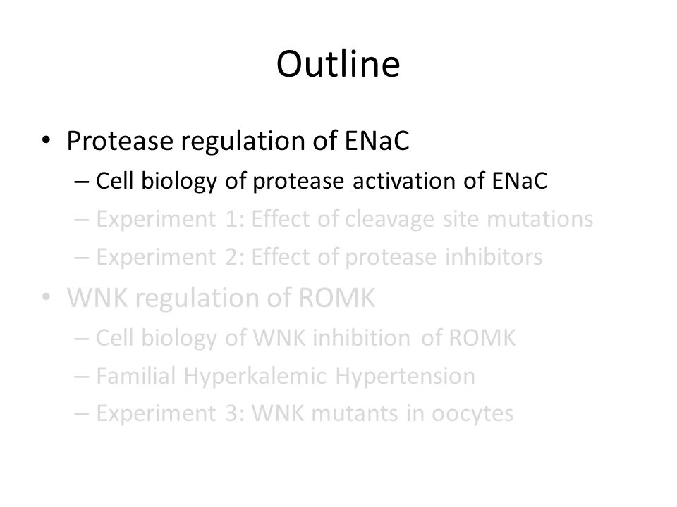 Outline Protease regulation of ENaC – Cell biology of protease activation of ENaC – Experiment 1: Effect of cleavage site mutations – Experiment 2: Effect of protease inhibitors WNK regulation of ROMK – Cell biology of WNK inhibition of ROMK – Familial Hyperkalemic Hypertension – Experiment 3: WNK mutants in oocytes
