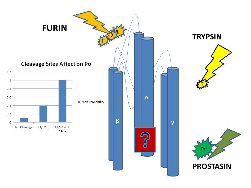 α γ β TRYPSIN FURIN PROSTASIN 1 2 F Pr T