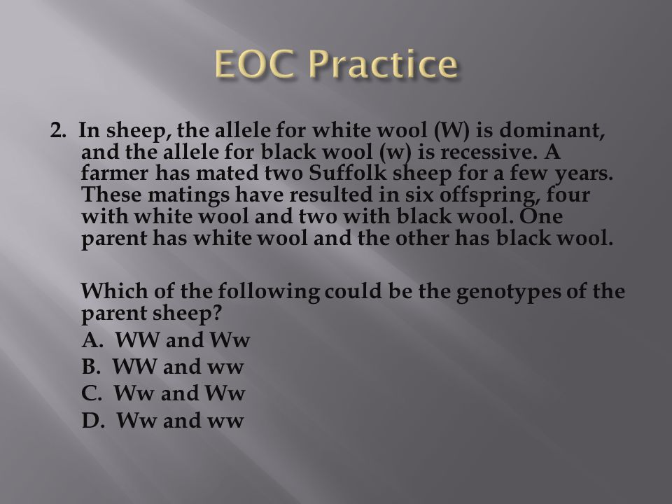 2. In sheep, the allele for white wool (W) is dominant, and the allele for black wool (w) is recessive. A farmer has mated two Suffolk sheep for a few