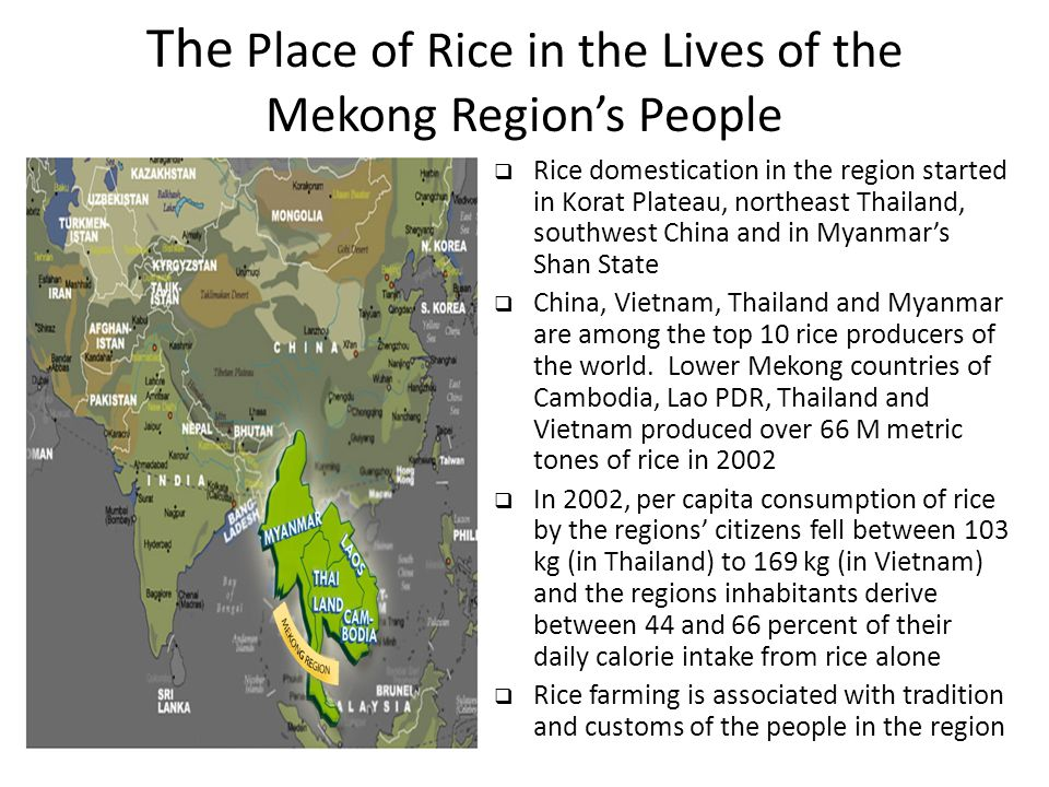The Place of Rice in the Lives of the Mekong Region's People  Rice domestication in the region started in Korat Plateau, northeast Thailand, southwes