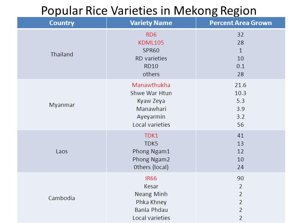 Popular Rice Varieties in Mekong Region CountryVariety NamePercent Area Grown Thailand RD6 KDML105 SPR60 RD varieties RD10 others 32 28 1 10 0.1 28 Myanmar Manawthukha Shwe War Htun Kyaw Zeya Manawhari Ayeyarmin Local varieties 21.6 10.3 5.3 3.9 3.2 56 Laos TDK1 TDK5 Phong Ngam1 Phong Ngam2 0thers (local) 41 13 12 10 24 Cambodia IR66 Kesar Neang Minh Phka Khney Banla Phdau Local varieties 90 2