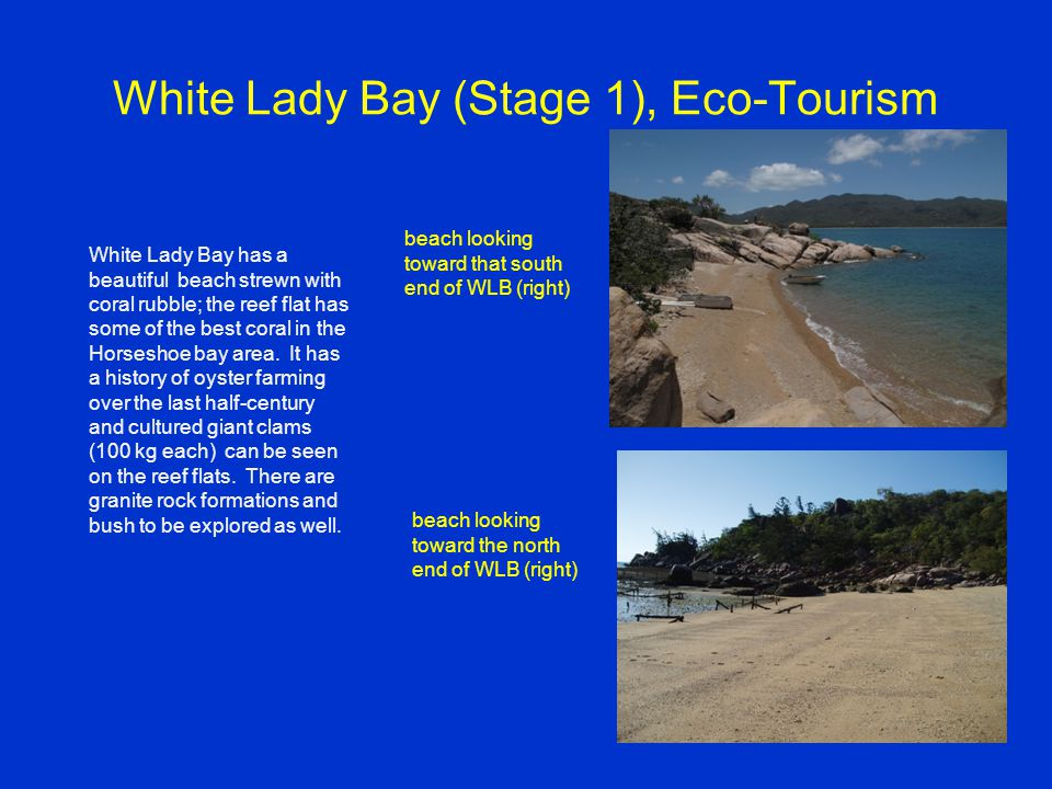White Lady Bay (Stage 1), Eco-Tourism beach looking toward that south end of WLB (right) beach looking toward the north end of WLB (right) White Lady Bay has a beautiful beach strewn with coral rubble; the reef flat has some of the best coral in the Horseshoe bay area.