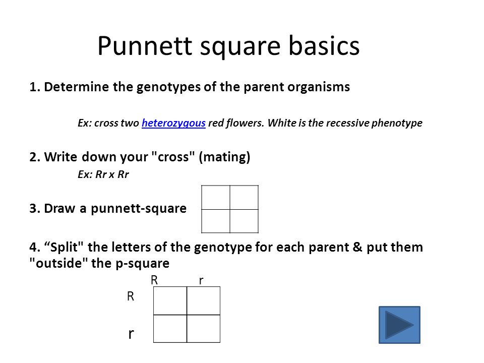 Where do you need to start? Punnett square basics Dominant-recessive practice problems F1 and F2 problems Incomplete dominance problems Sex-linked pro