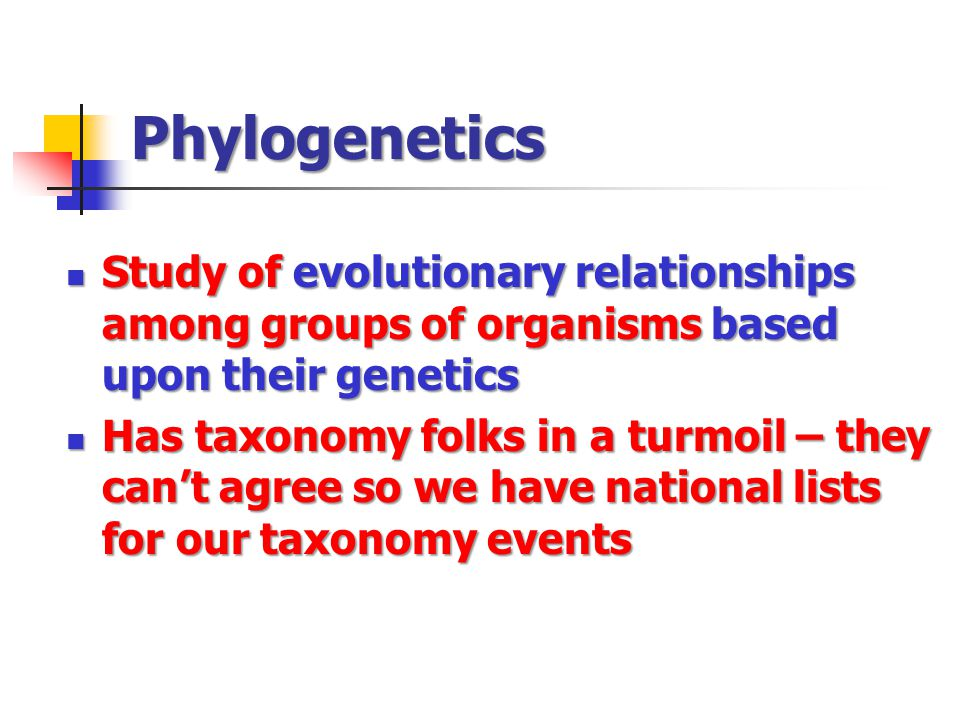 Phylogenetics Study of evolutionary relationships among groups of organisms based upon their genetics Study of evolutionary relationships among groups of organisms based upon their genetics Has taxonomy folks in a turmoil – they can't agree so we have national lists for our taxonomy events Has taxonomy folks in a turmoil – they can't agree so we have national lists for our taxonomy events